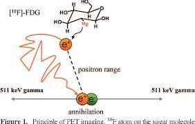 AnnihilationofFludeoxyglucose.jpg